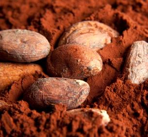 Rauw 100% cacao